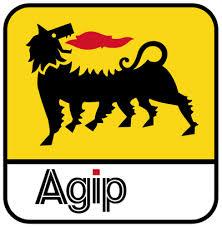 Nigerian Agip Oil Company Tertiary Scholarship