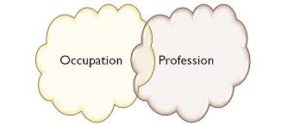 Occupation and Profession